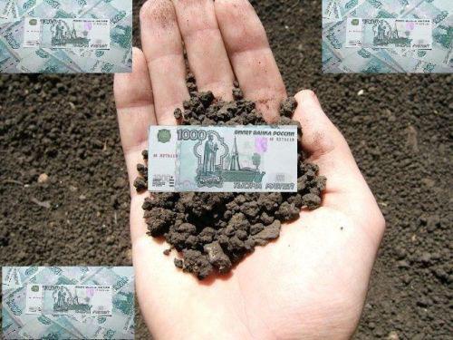 льготы по уплате налога за аренду земли самом деле